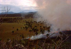 F-04870-Indigenas-Yanomami-Amazonas-Venezuela-1966-Carmen-Dyna-Guitian-Pedrosa