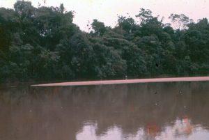 F-04874-Indigenas-Yanomami-Amazonas-Venezuela-1966-Carmen-Dyna-Guitian-Pedrosa