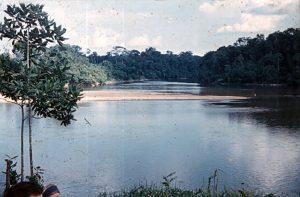 F-04879-Indigenas-Yanomami-Amazonas-Venezuela-1966-Carmen-Dyna-Guitian-Pedrosa