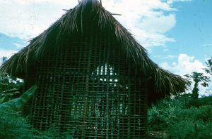 F-04894-Indigenas-Yanomami-Amazonas-Venezuela-1966-Carmen-Dyna-Guitian-Pedrosa