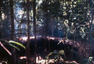 F-04918-Indigenas-Yanomami-Amazonas-Venezuela-1966-Carmen-Dyna-Guitian-Pedrosa