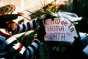 F-03920-Sardina-de-Naiguata-Vargas-1981-INAF