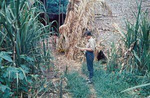F-04953-Yanomami-Amazonas-1966-Carmen-Dyna-Guitian-Pedrosa-Anotando