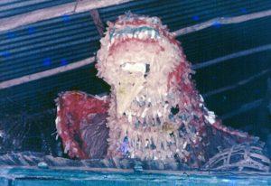 F-04282-Taparitas-de-Cariaco-Sucre-1987-IPC-UPEL