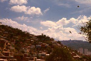F-05051-Valle-Barrios-1978-Enrique-Ali-Gonzalez