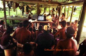 F-09465-1999 Guacajara de La Horqueta TV3 (5) copy