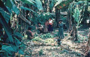 F-04912-Indigenas-Yanomami-Amazonas-Venezuela-1966-Carmen-Dyna-Guitian-Pedrosa