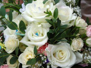 Flor-Rosa-Blanca
