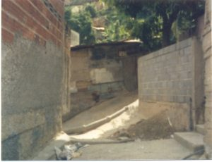 F-01843-TdC-0226-Cruz-Mayo-Ballaja-Macuto-Vargas-1987-IPC-UPEL