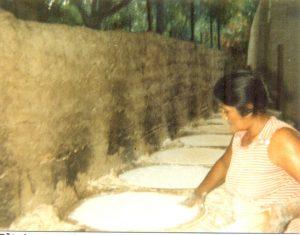 F-01922-07-TdC-0228-Cruz-M-Chaguaramal-1987-IPC-UPEL