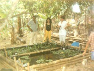F-01922-10-TdC-0228-Cruz-M-Chaguaramal-1987-IPC-UPEL