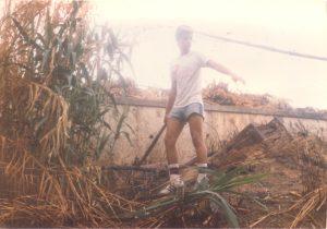 F-01941-Cruz-Mayo-Alberto-Ravell-El-Valle-Caracas-1987-IPC-UPEL