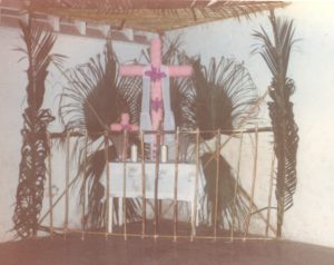 F-01979-Cruz-Mayo-Alberto-Ravell-El-Valle-Caracas-1987-IPC-UPEL