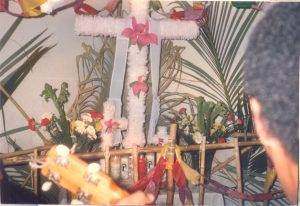 F-02016-Cruz-Mayo-Alberto-Ravell-El-Valle-Caracas-1987-IPC-UPEL
