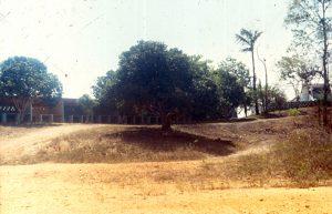 F-12933-Cruz-M-Tacarigua-M-1987-IPC-UPEL