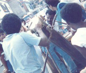 F-01711-San-Juan-Bautista-La-Vega-Caracas-1987-IPC-UPEL