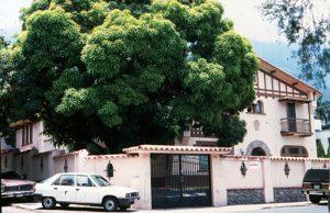 F-04655-Griegos-Caracas-1992-MTP