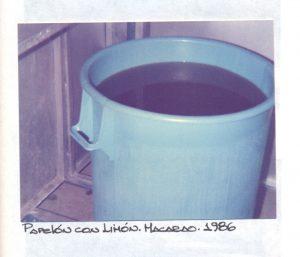 F-00998-V-Fatima-Macarao-1986-IPC-UPEL