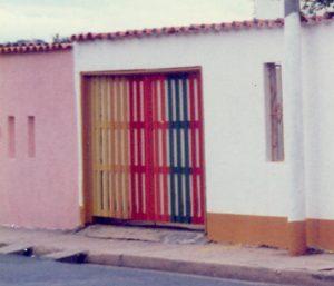 F-04502-Caiguire-Cumana-J-Ravelo-EAGO-1991