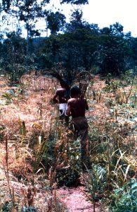 F-04848-Indigenas-Piaroa-Venezuela-1979-CONAC-INIDEF