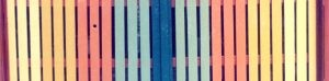 F-07416-Caiguire-Cumana-J-Ravelo-EAGO-1991