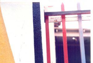 F-07442-Caiguire-Cumana-J-Ravelo-EAGO-1991