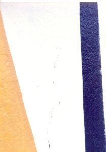 F-07443-Caiguire-Cumana-J-Ravelo-EAGO-1991