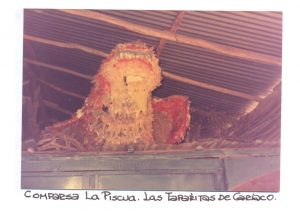 F-01555-Taparitas-de-Cariaco-Sucre-1987-IPC-UPEL