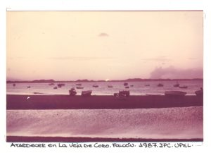 F-02343-Santos-Inocentes-Locos-Vela-de-Coro-Falcon-1987-IPC-UPEL