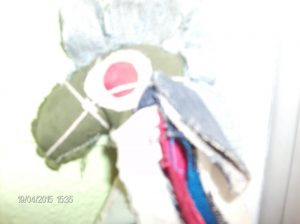 F-03030-Caballitos-San-Juan-Enrique-Ali-González-Ordosgoitti-19-04-2015JPG