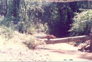 F-06773-San-Diego-Alcala-Ocumare-Tuy-Miranda-1988-IPC-UPEL