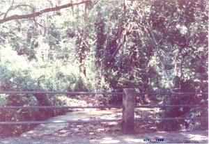 F-06774-San-Diego-Alcala-Ocumare-Tuy-Miranda-1988-IPC-UPEL