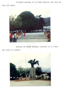 F-06945-Virgen-Inmaculada-Montalban-Carabobo-1988-IPC-UPEL