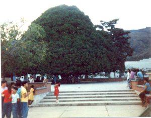 F-06946-Virgen-Inmaculada-Montalban-Carabobo-1988-IPC-UPEL