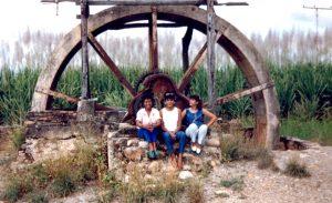 F-06993-Virgen-Inmaculada-El-Tocuyo-Lara-1988-IPC-UPEL