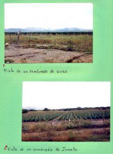 F-07005-Virgen-Inmaculada-El-Tocuyo-Lara-1988-IPC-UPEL