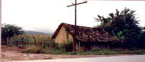 F-07011-Virgen-Inmaculada-El-Tocuyo-Lara-1988-IPC-UPEL