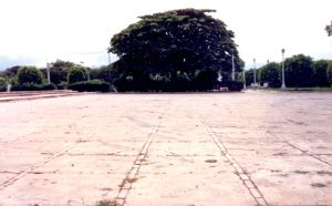 F-07029-Virgen-Inmaculada-El-Tocuyo-Lara-1988-IPC-UPEL
