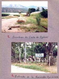 F-07049-Virgen-Inmaculada-El-Tocuyo-Lara-1988-IPC-UPEL