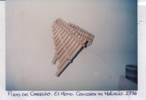 F-09267-S-Inoc-Mono-Caicara-Maturin-1996-IPC-UPEL