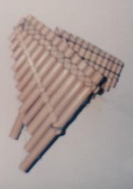 F-09268-S-Inoc-Mono-Caicara-Maturin-1996-IPC-UPEL