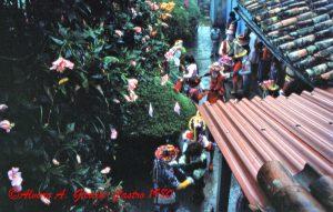 F-09594-1980-2 Feb- El Playón-Locaina de la Candelaria 29 Copy