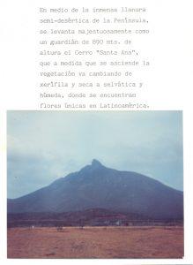 F-02248-Moruy-Artesania-Falcon-1987-IPC-UPEL