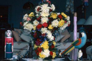 F-03579-Cruz-Mayo-Colegio-El-Peñon-Miranda-1992-Foto-Moraiba-Tibisay-Pozo