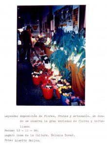 F-06513-San-Martin-de-Tours-Colonia-Tovar-Aragua-1988-IPC-UPEL
