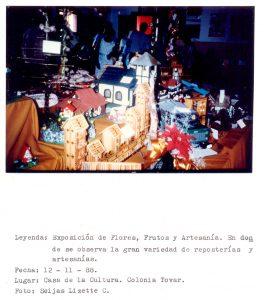 F-06627-San-Martin-de-Tours-Colonia-Tovar-Aragua-1988-IPC-UPEL