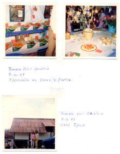 F-06653-San-Martin-de-Tours-Colonia-Tovar-Aragua-1988-IPC-UPEL