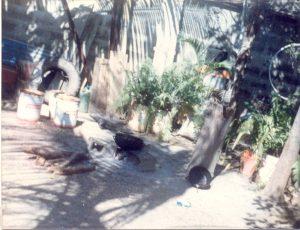 F-06876-Fiesta-Infantil-El-Sombrero-1989-IPC-UPEL